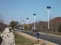 6米太陽能路燈;太陽能路燈廠家 4