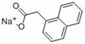 PGR Sodium naphthalene-1-acetate 61-31-4