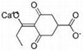 PGR Prohexadione calcium 127277-53-6 92%