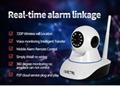 anti-theft alarm device