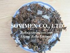 Fertilizer Sargassum Seaweed_Supplier Viet Nam