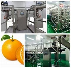 Citrus processing line, orange processing plant