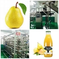 Pear processing line, juice production