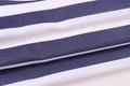 柯桥2017冬季条纹提花布纺女装面料F06253 3