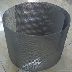 titanium mesh