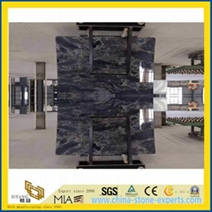 New Polished exclusive Marble for