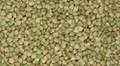 Good quality raw buckwheat kernel 1