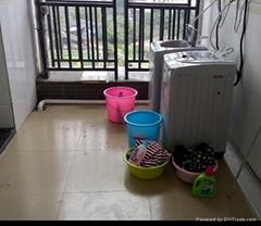 广州鼎创全自动投币洗衣机厂家直销低价批发出售