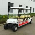 常州环保节能电动高尔夫球车报价,看房接待车 5