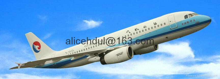 China Airport to Algeria Tunisia Libya Country Airfreight Bustiness Service 1