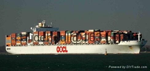 Shipping Service From China To Rotterdam /Felixstowe/ Le Havre/Hamburg 1