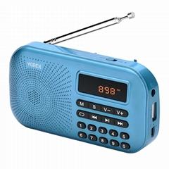 Am /FM    Radio