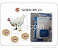 Dicalcium Phosphate DCP Feed Grade 18% Feed Concentrate 1