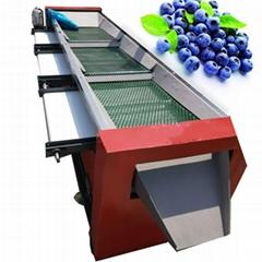 伟明牌实用新型四级蓝莓分级机