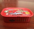 達仔魚罐頭鐵罐包裝盒 2