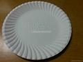 Biodegradable ( sugarcane ) Plates