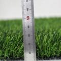 长春幼儿园人造草坪塑料仿真草坪