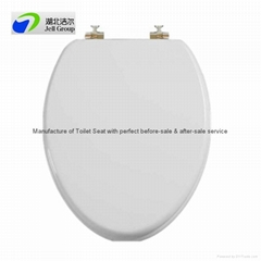 Toilet Seat Products Diytrade China Manufacturers