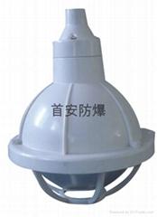 BAD52-e防爆全塑灯,防水防尘防腐三防灯