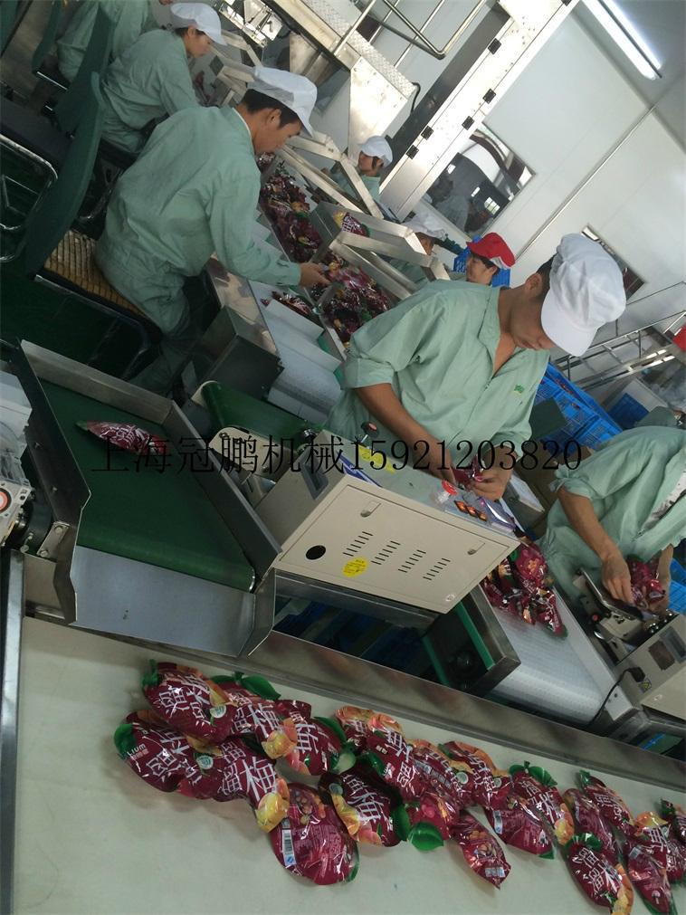 上海冠鹏机械供应皮带输送机 2