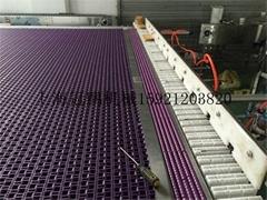 上海冠鹏供应2米款链网输送机