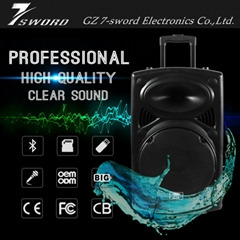 10 '' bass home theater Bluetooth portable speaker with LED light for DJ