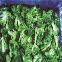 Frozen Broccoli in China