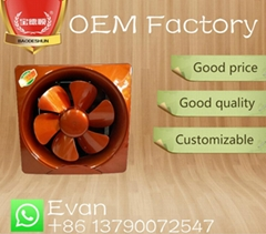 "golden 10"" household exhaust fan ventilating fan"