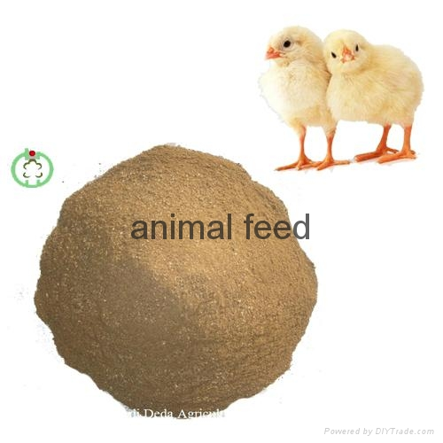 meat bone meal high quality 2