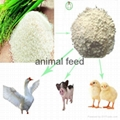 rice protein meal feeddtuff