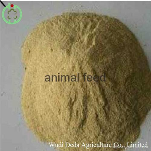yeast animal fodder 1