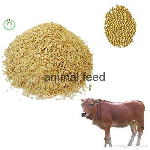 soyabean meal feedstuff 1