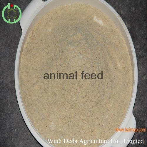 Shrimp meal feedstuff 1