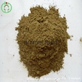 Fish meal animal feed high protein 2