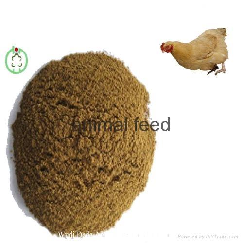 meat bone meal animal feed 3