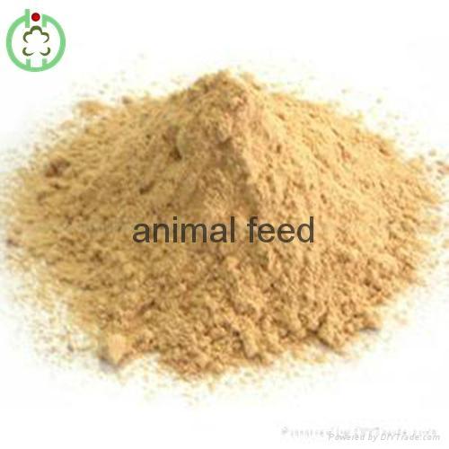 lysine feed additives 2
