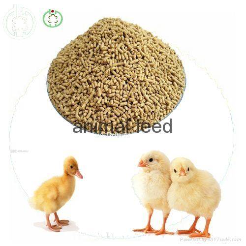 lysine feed additives 4