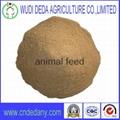 meat bone meal high quality 1