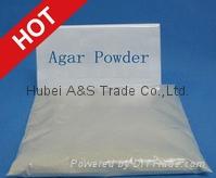 Agar Agar Pwder
