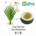 Iris domestica extract