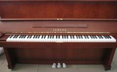 宝宝学钢琴   时机