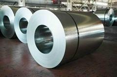 prepainted galvanized/aluzinc steel coil
