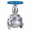 Globe valve 1