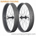 Carbon Fat Bicycle Wheels, Bicycle