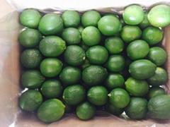 Lemon lime fruit for sell
