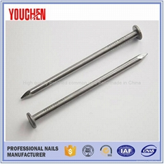 China manufacturer products polished common wire nails