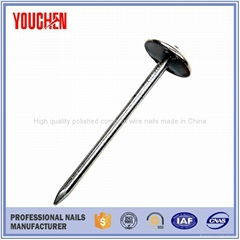 China factory price twist umbrella head roofing nails