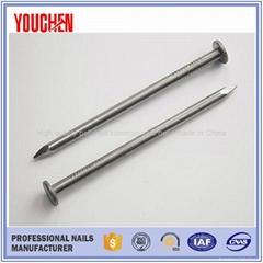 High quality polished round iron nails