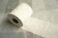 Tissue paper  1
