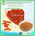 Free Sample Natural Wolfberry Extract 1